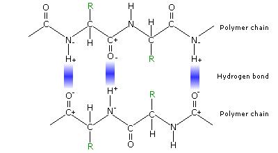 HydrogenBondImage